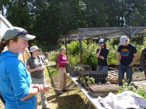 Learning about native plant propagation with MRC Native Plant Nursery Manager Monica Scholey